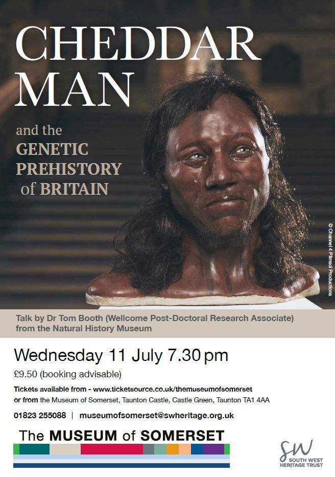 Cheddar Man and the Genetic Prehistory Of Britain @ Museum of Somerset | England | United Kingdom